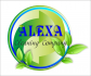 /kompanii/«alexa»-cleaningcompany/